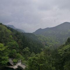 廬山風景名勝區用戶圖片
