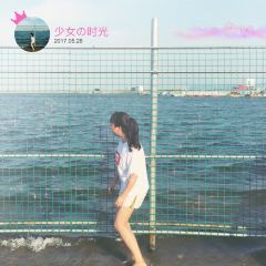 진산 해변 여행 사진