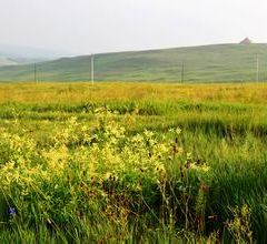 哈達門國家森林公園用戶圖片