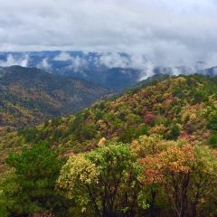 Shaanxi Huangling National Forest Park User Photo