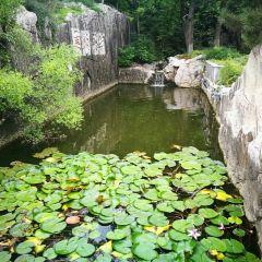 Yunlong Mountain User Photo