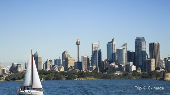 Sydney Harbour Sailing Cruise