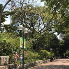 Kowloon Park User Photo