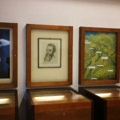 倫琴博物館用戶圖片