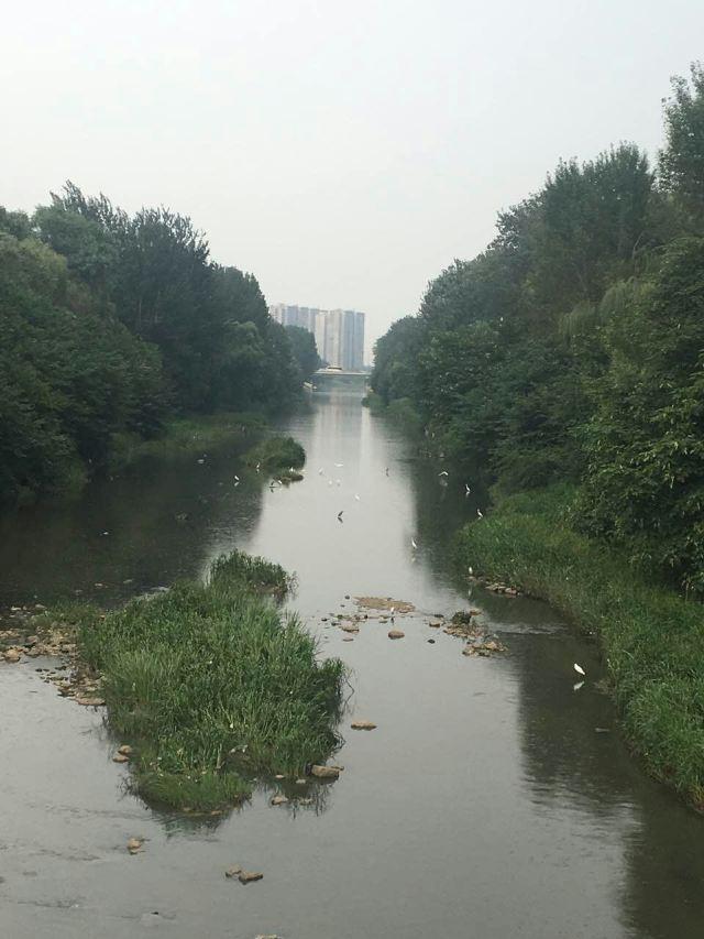 Jiangfu Park