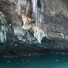 瑪雅灣用戶圖片