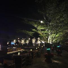 Waterside Resort Restaurant User Photo