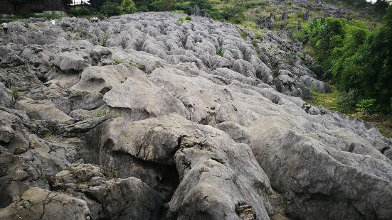 興文地質博物館
