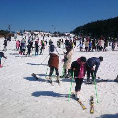 상량강 스키 리조트 여행 사진