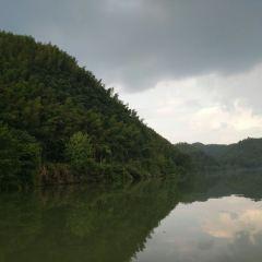 Cailun Bamboo Ocean User Photo