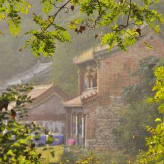 Qingxu Mountain User Photo