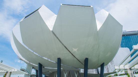 ArtSpace Museum