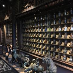 FITO Museum User Photo