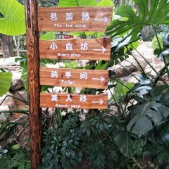 치산(기산) 삼림 온천 리조트 여행 사진