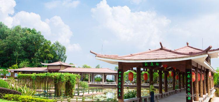 Lianhua Mountain Scenic Area1