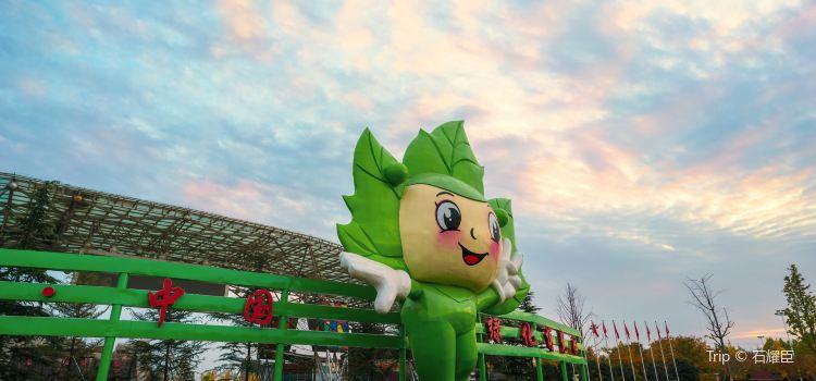中國綠化博覽園1