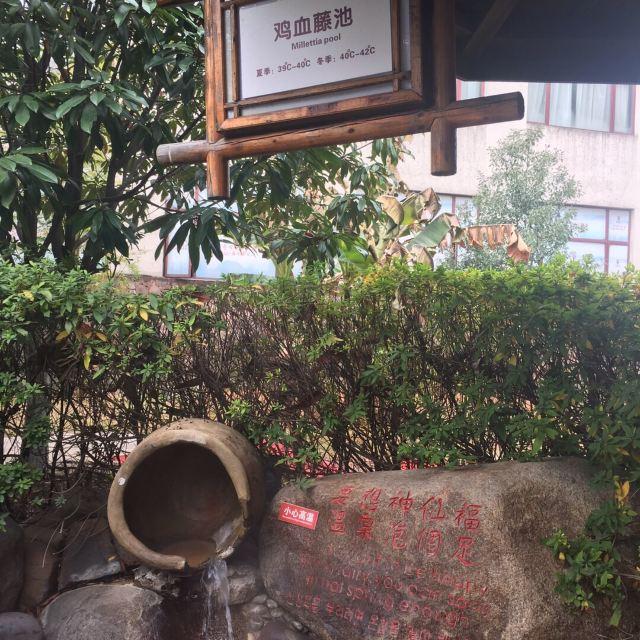 자룡만 온천 국제 호텔