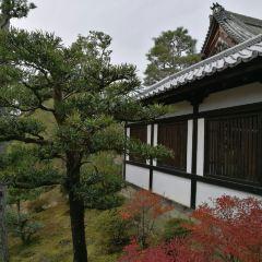 Tofukuji Temple User Photo