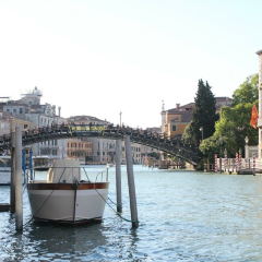 Ponte dell'Accademia User Photo