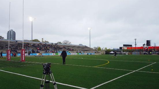 Lamport Stadium