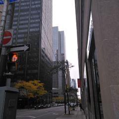 Yonge Street User Photo