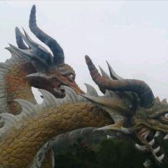 E-DA Theme Park User Photo