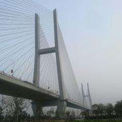 Jingzhou Changjiang Bridge User Photo