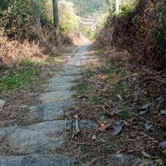Panshan Old Road User Photo