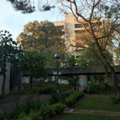 Curtin University User Photo