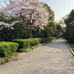 城市綠谷景區用戶圖片