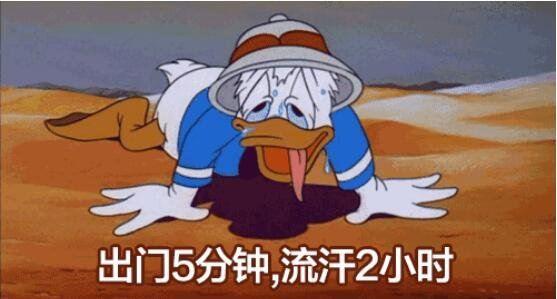 逃離40多度的西安,去太白縣尋找夏日天堂!