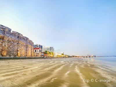 Larnaka fort