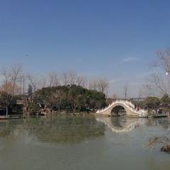 Twenty-four Bridge User Photo