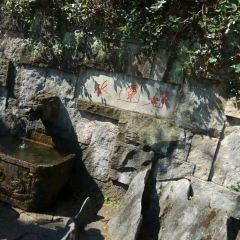 千島湖好運島用戶圖片