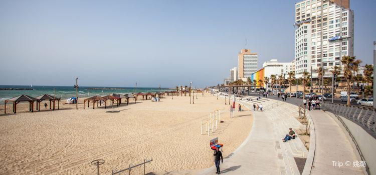 Frishman Beach1
