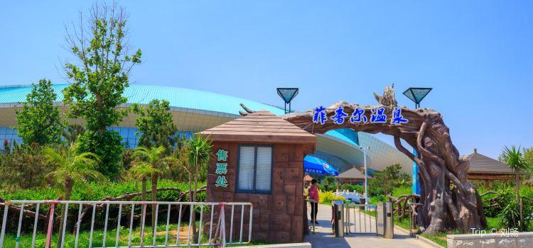 Feishi'er Seaview Hot Spring Resort, Fisher Island3