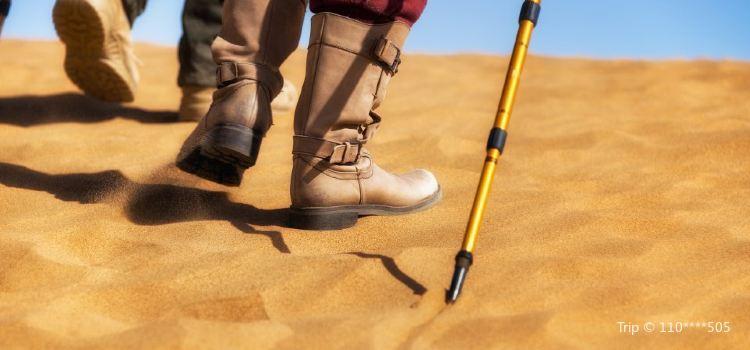 騰格里沙漠營地3