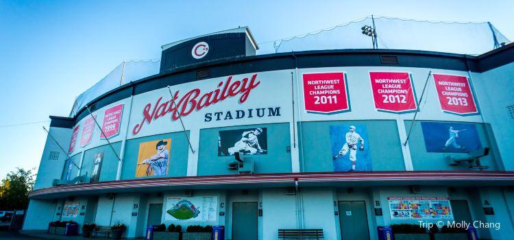 Scotiabank Field at Nat Bailey Stadium1