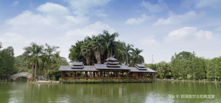 Jinhua Tea Garden2