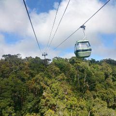Skyrail Rainforest Cableway User Photo