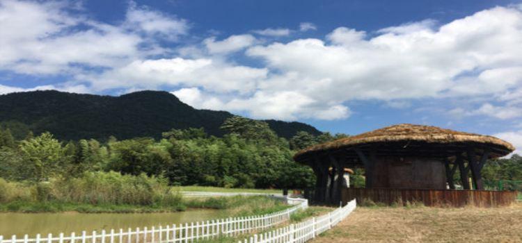 靈峰山森仙動物農場3