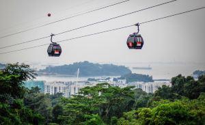 新加坡,推薦