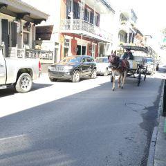 Royal Street User Photo