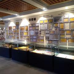 雲子博物館用戶圖片