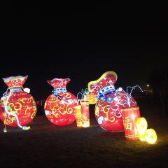 손자문화주제랜드 여행 사진