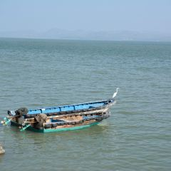 Shanwei Harbor User Photo