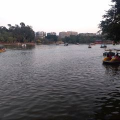 Zhongshan Park Yongyuan User Photo