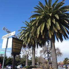 실리콘밸리 여행 사진