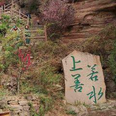 "Tao Garden (""Peach Blossom Land"") User Photo"