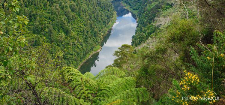 Whanganui National Park2